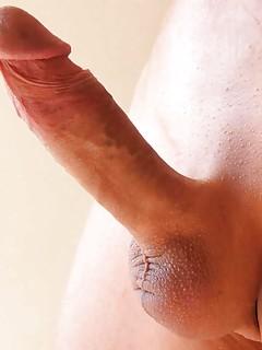 Shaved Gay Cock Porn